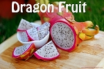 Dragon Fruit Premium E-Liquid